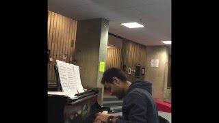 """Pani Da Rang (Vicky Donor) & Animals (Maroon 5) Piano instrumental mashup."""