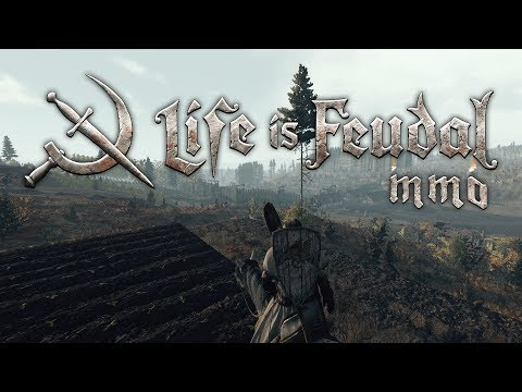 Life is Feudal MMO - Armitage and the Walls