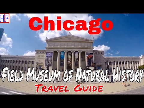 Chicago | Field Museum of Natural History | Tourist Attractions | Episode# 7