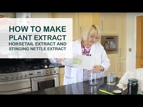 How to Make Plant Extract - Horsetail Extract and Stinging Nettle Extract