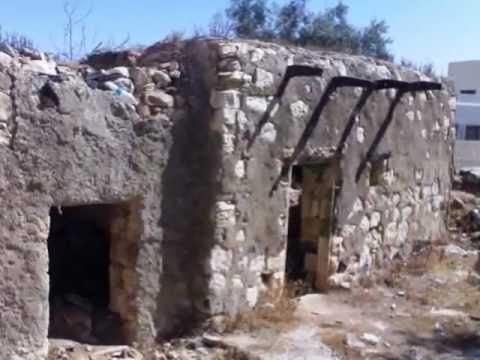 نتيجة بحث الصور عن صور من قرية الصريح اربد