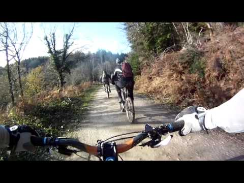The Dragons Back. Forest of Dean. Mountain biking