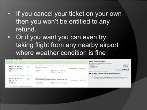 Air Canada Flight Cancellation | What Should You Do If Your Flight Gets Canceled?