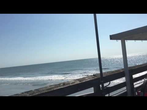 MYRTLE BEACH VLOG 2017 3 LOOKING FOR SHARKS TALKING TO PEOPLE ON PS4 And MORE