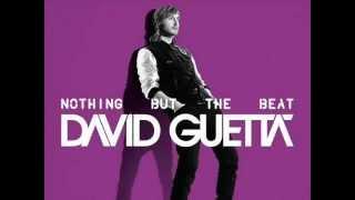 David Guetta - Paris (Party Mix) Nothing but the beat
