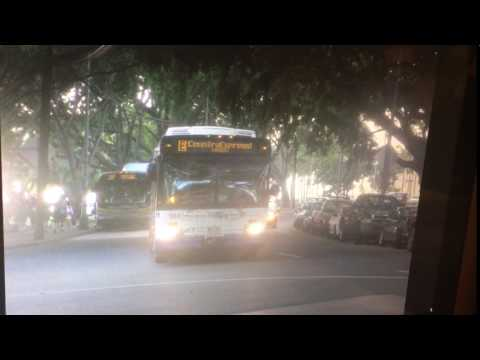 TheBus Honolulu 2002 NewFlyer D60LF #104 Route E Picture