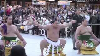 Dezuiri - Sumo Ring-Entry Ritual with 3 Yokozuna 2015