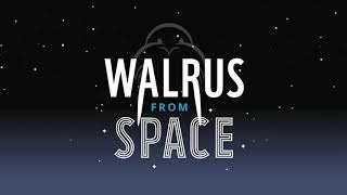 Help us find walrus from space | WWF