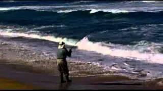 Pesca de Corvina Litoral central, Chile