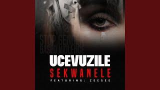 Gambar cover Sekwanele (feat. Zeegee)