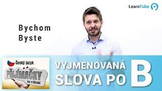 PŘIJÍMAČKY NA STŘEDNÍ (4LETÉ OBORY) - ČEŠTINA - LEKCE 2: Vyjm. slova po B - T. Ficza 💙 LearnTube.cz