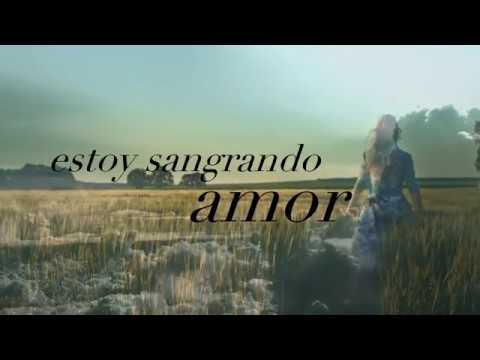 FOR YOU (Fifty Shades Freed) (Lyric Video)  -  Liam Payne, Rita Ora (Lyrics sub español traducido)