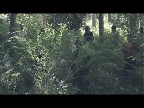 Die Heuwels Fantasties – Wonder Bo Wonder ft. Coenie de Villiers