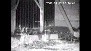 THE BEST OF RAT SHOOTING WITH NIGHT VISION 2012 PEST CONTROL  PART 1 OF 2