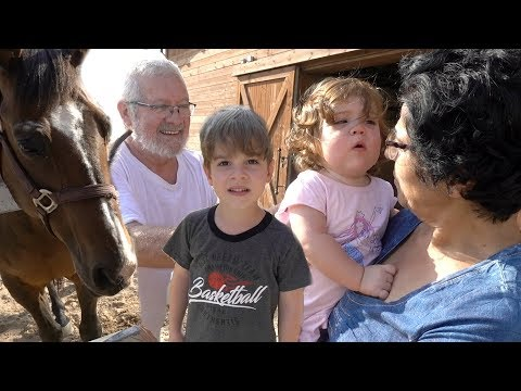 GRANDPARENTS SURPRISE KID WITH A HORSE