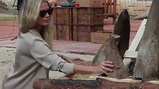 В Чехии сожгли 33 кг рогов носорога