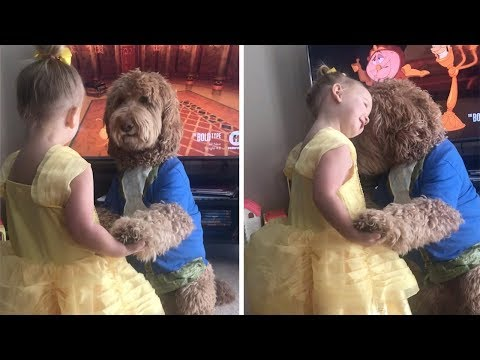 Toddler And Dog Dance As Beauty And Beast