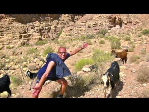 Middlebury Language Program - Study Abroad in Jordan