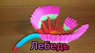 3D Модульное оригами Лебедь/Swan