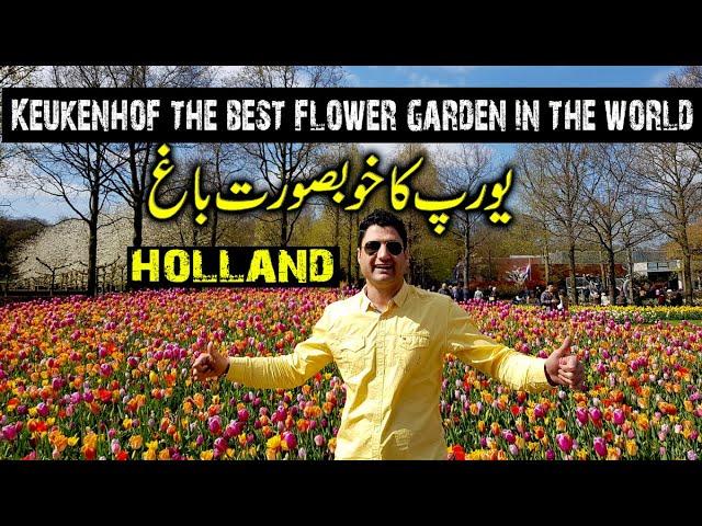 Keukenhof Garden Amsterdam Tulip Festival Netherlands Europe