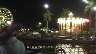 牛くん(+カメ)夜の散歩@ブルネイ王国