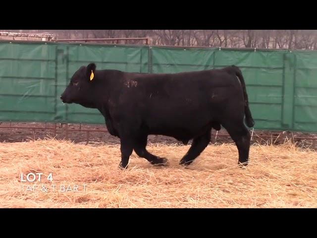 Taliaferro Angus \u0026 T Bar T Angus Ranch - 4