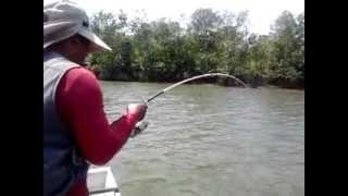 Strike Monster JT Sungai Sesumpu