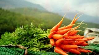 ЧЕМ ПОЛЕЗНА МОРКОВЬ   КАК УЛУЧШИТЬ ВОЛОСЫ И КОЖУ #сок #косметология #морковь #волосы #кожа #красота