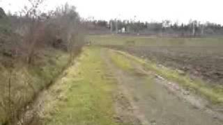 yz85 crash