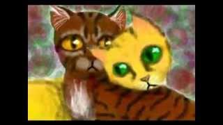 Tigerstar and Goldenflower--Criminal