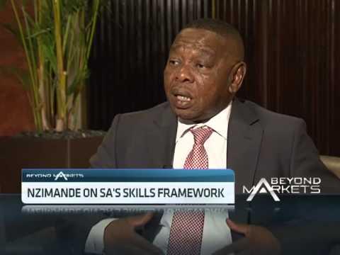 Blade Nzimande on SA's Skills Framework