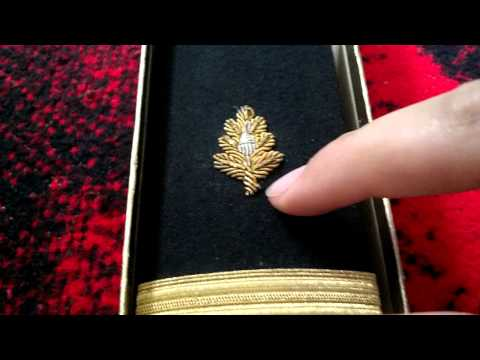 Rare Navy Shoulder Boards ?