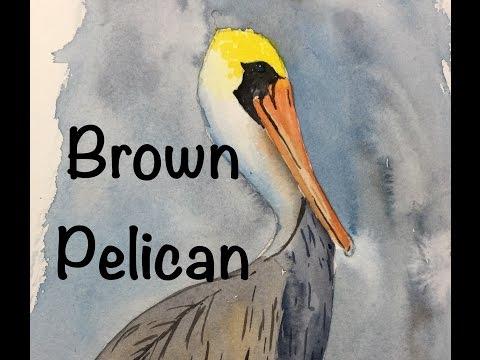 How to paint a Brown Pelican in Watercolor Tutorial Bird Sea Ocean