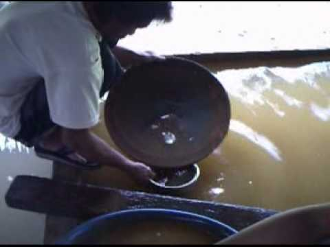 GOLD in the Philippines - Manual process using mercury