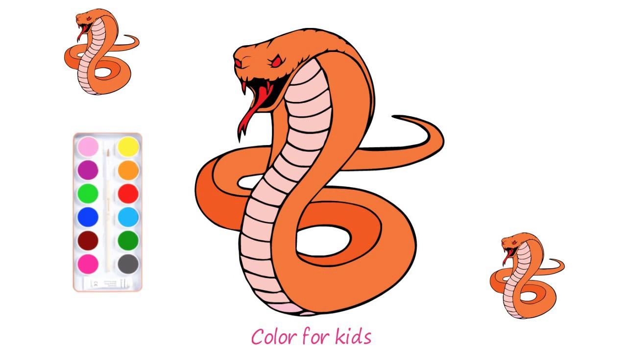 vẽ rắn hổ mang | tô màu rắn hổ mang cùng bạn bút chì | học và chơi