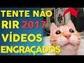 VIDEOS ENGRAÇADOS 2017   TENTE NÃO RIR   FUNNY VIDEOS #1