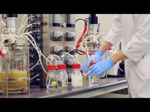 Conversion of Food Waste into Poly(Lactic Acid) Fibre