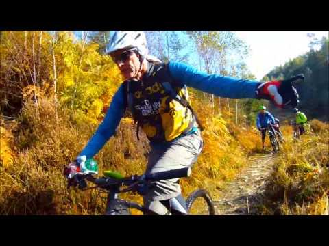 Mountain biking Ardennes forrest Belgium
