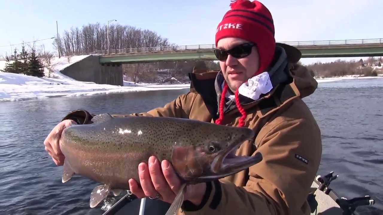 Black river steelhead fishing youtube for Fishing in ny
