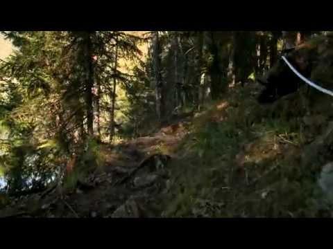 Norway Massacre: The Survivors