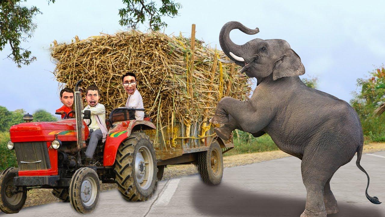 हाथी गन्ना खाना ट्रैक्टर Elephant Sugarcane Tractor Rescue Comedy Video हिंदी कहानिय Hindi Kahaniya