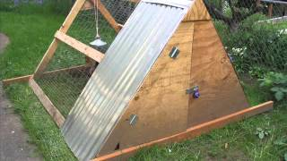 How To Build A Chicken Coop For 12 , 10, 13 Chickens - Chicken Coop Plans For 12 Chickens