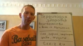 Вегетарианство - вред или польза: Метионин