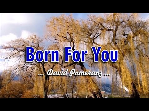 Born For You - David Pomeranz (KARAOKE)