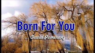 Born For You - David Pomeranz (KARAOKE VERSION)