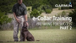 e-Collar Training: Preparing for Success, Part 2
