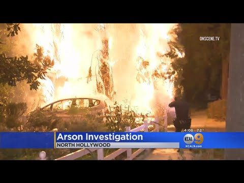 Several Suspicious Tree Fires Break Out In North Hollywood