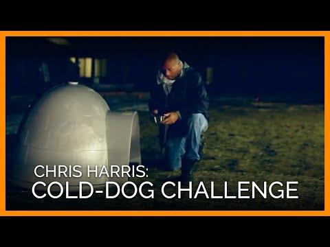 Chris Harris: Cold-Dog Challenge