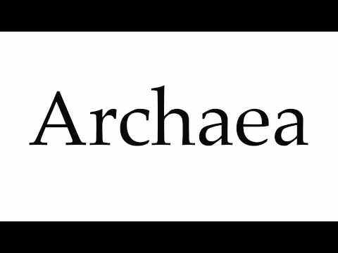 How to Pronounce Archaea