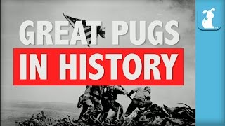 Great Pugs In History